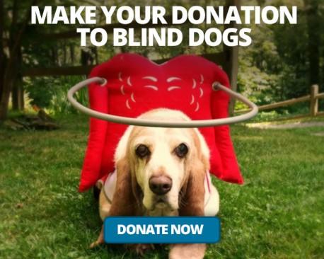 Donate-ad